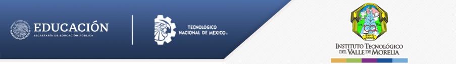 Plataforma Académica del ITVM